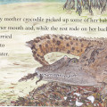 Eva Books Nipper The Crocodile