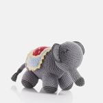 Samana Bangladesh Elephant