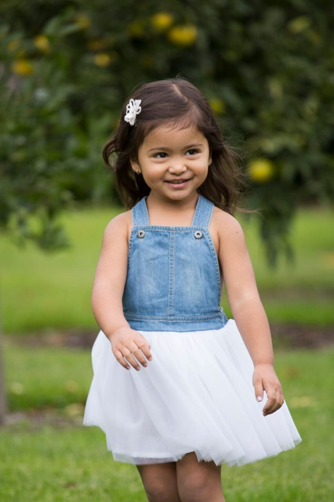 Fox & Finch S/16 Madison Denim Tulle Overall Dress